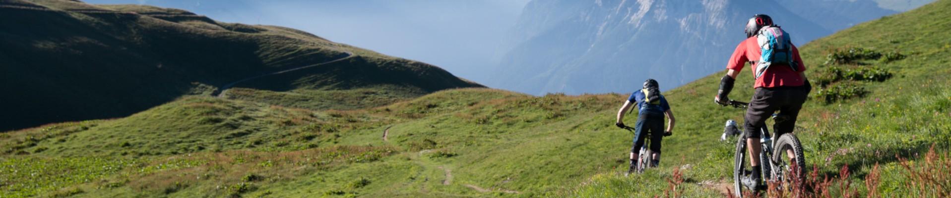 Mountain biking, cycling, bike