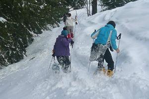 Activités sportives hiver