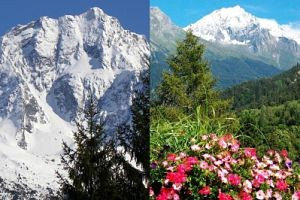Tour operator mountain summer