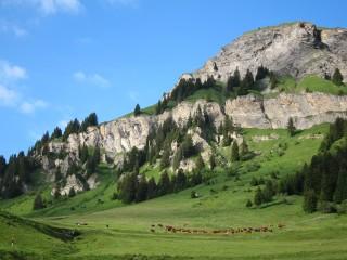 Alpage de Granier